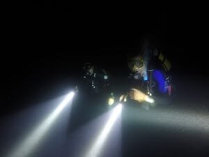 Divers at night dive